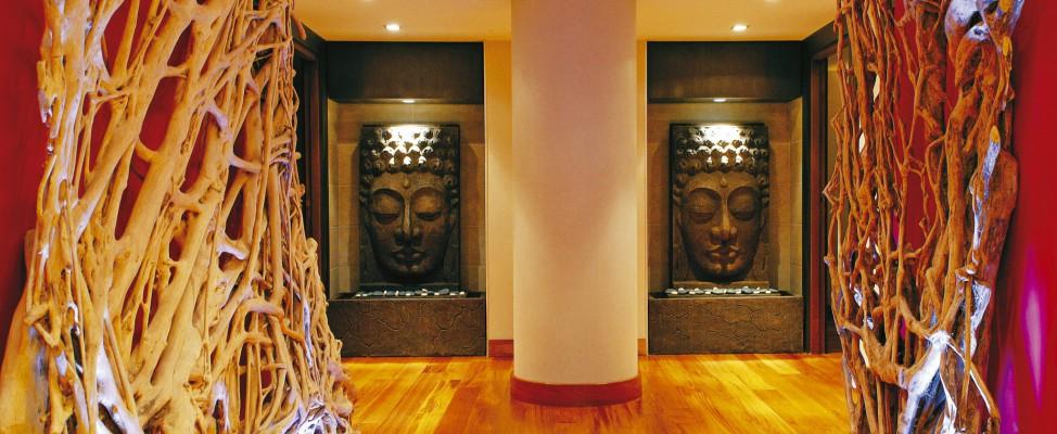 Spa Mahayana Hôtel Manali